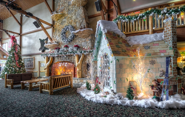 5 reasons to take the family to great wolf lodge this december bamcat